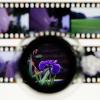 filmscan_icon_100x100