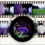 filmscan_icon_150x150
