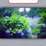 ネガのカラー反転方法 -iOSで-